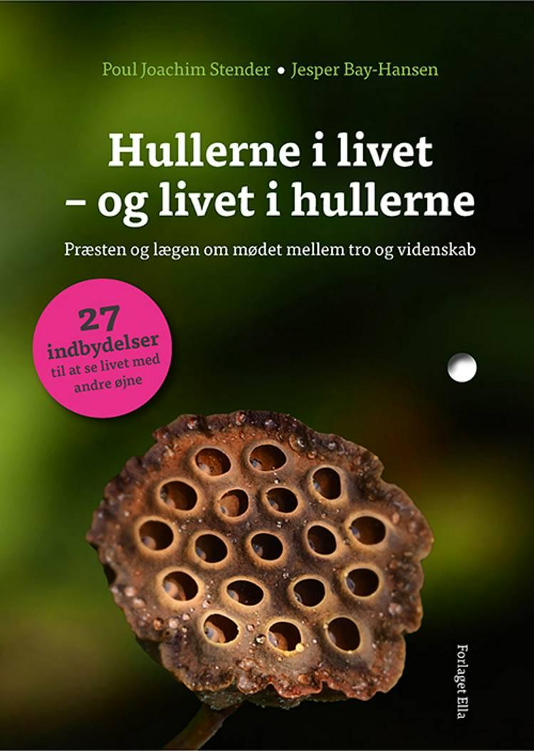 Hullerne i livet - og livet i hullerne af Poul Joachim Stender og Jesper Bay-Hansen