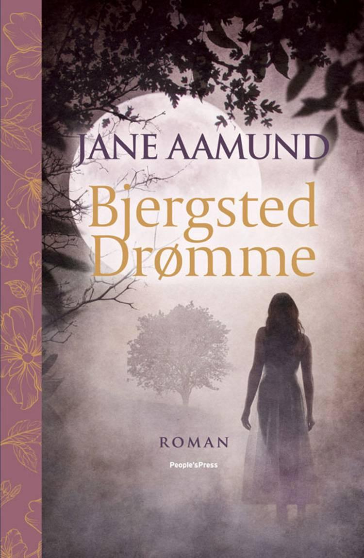 Bjergsted Drømme af Jane Aamund