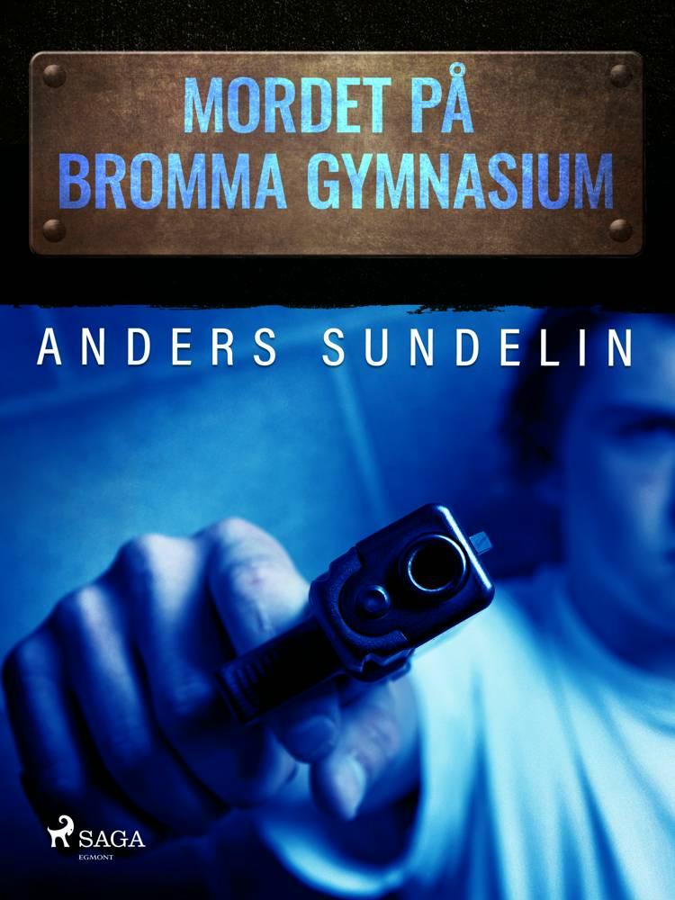 Mordet på Bromma gymnasium af Anders Sundelin
