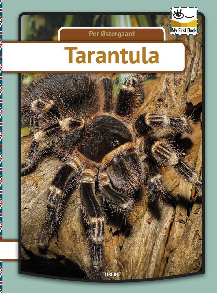 Tarantula af Per Østergaard