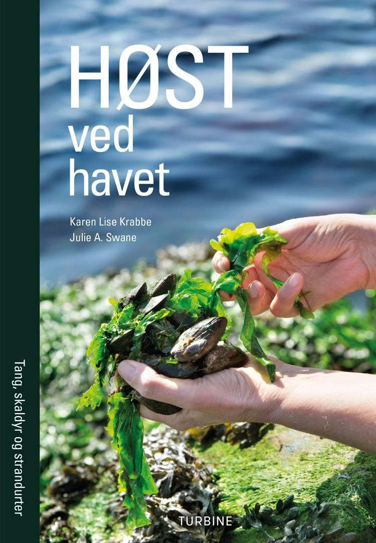 Høst ved havet af Karen Lise Krabbe og Julie Anette Swane