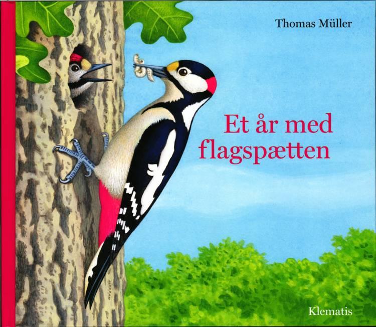 Et år med flagspætten af Thomas Müller