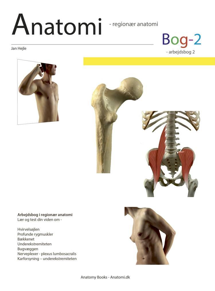 Anatomi - Bog 2 af Jan Hejle