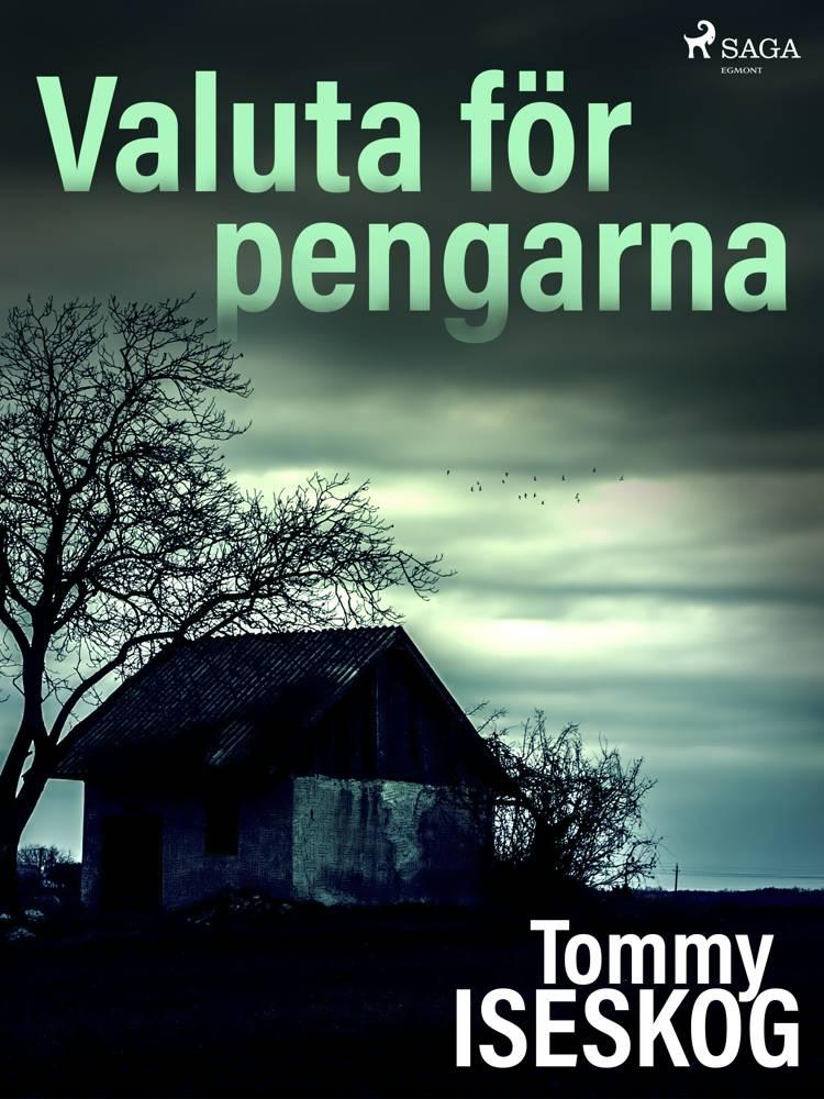 Valuta för pengarna af Tommy Iseskog