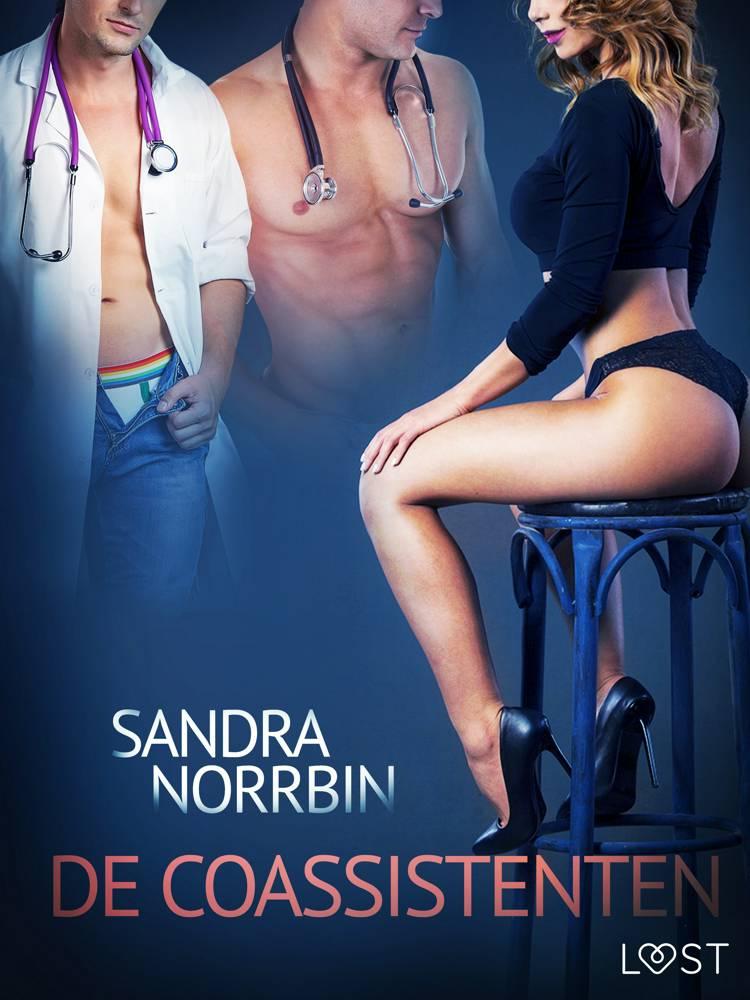 De coassistenten - erotisch verhaal af Sandra Norrbin