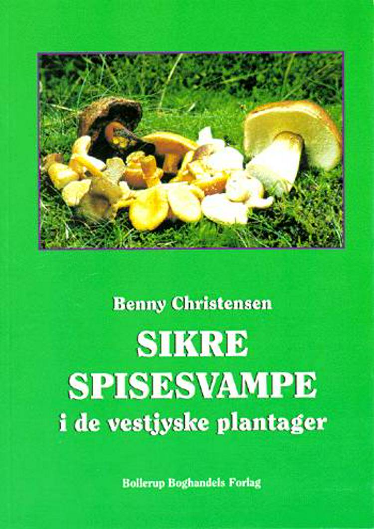 Sikre spisesvampe i de vestjyske plantager af Benny Christensen