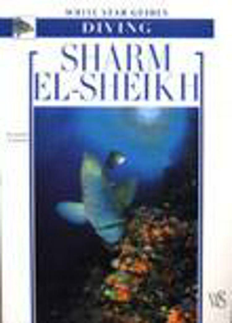 Sharm El-Sheikh, Diving