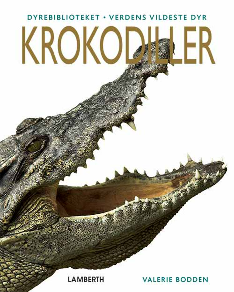Krokodiller af Valerie Bodden