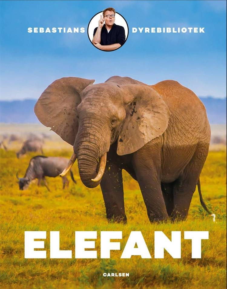 Sebastians dyrebibliotek: elefant af Sebastian Klein