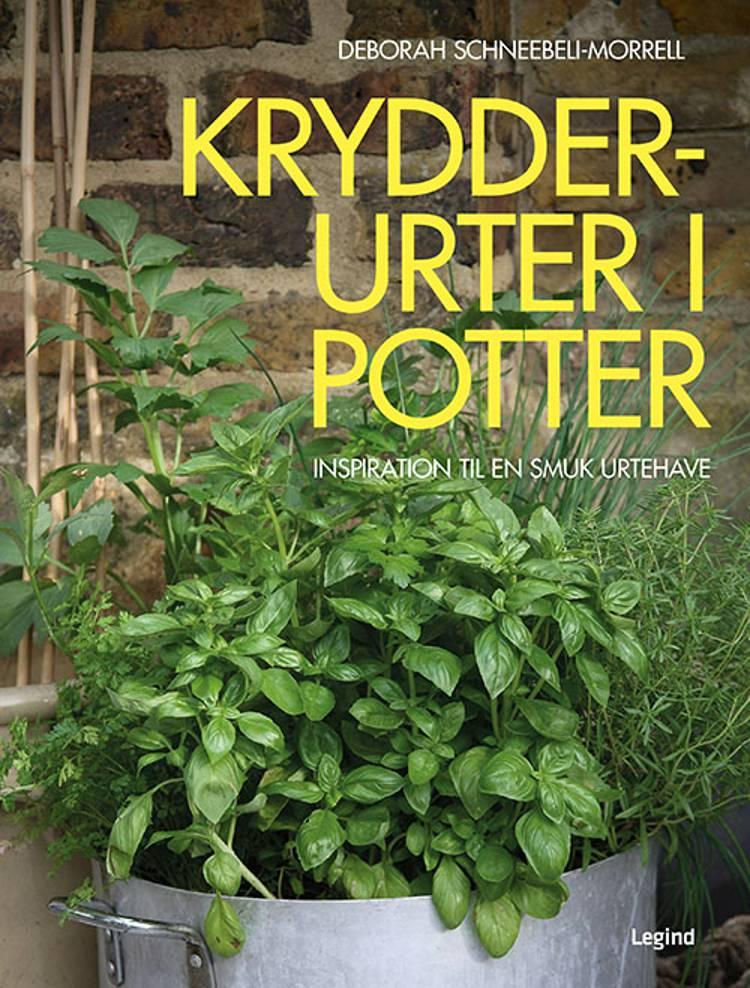 Krydderurter i potter af Deborah Schneebeli-Morrell