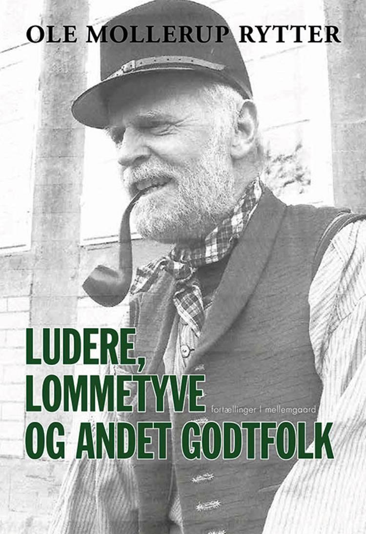 Ludere, lommetyve og andet godtfolk af Ole Mollerup Rytter