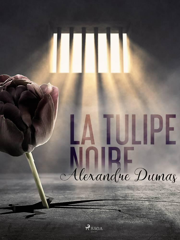 La Tulipe noire af Alexandre Dumas