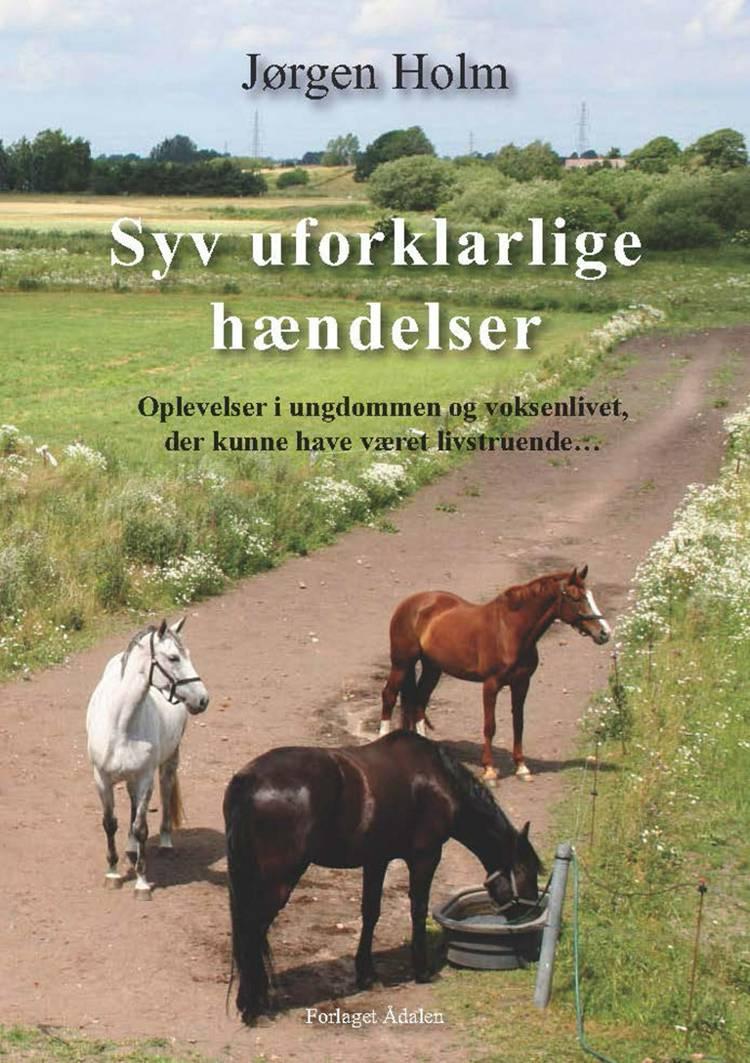 Syv uforklarlige hændelser af Jørgen Holm