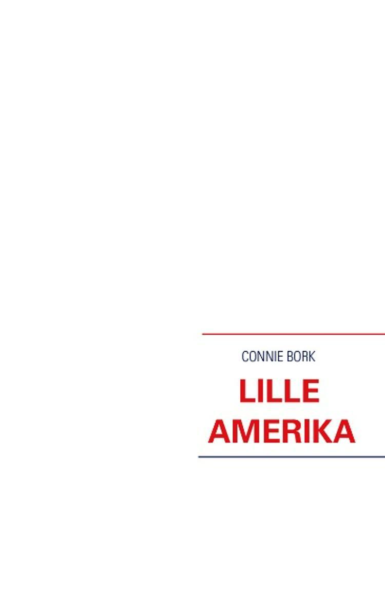 Lille Amerika af Connie Bork