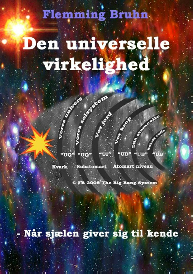 Den universelle virkelighed af Flemming Bruhn