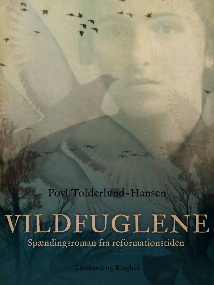 Vildfuglene - spændingsroman fra reformationstiden af Povl Tolderlund Hansen
