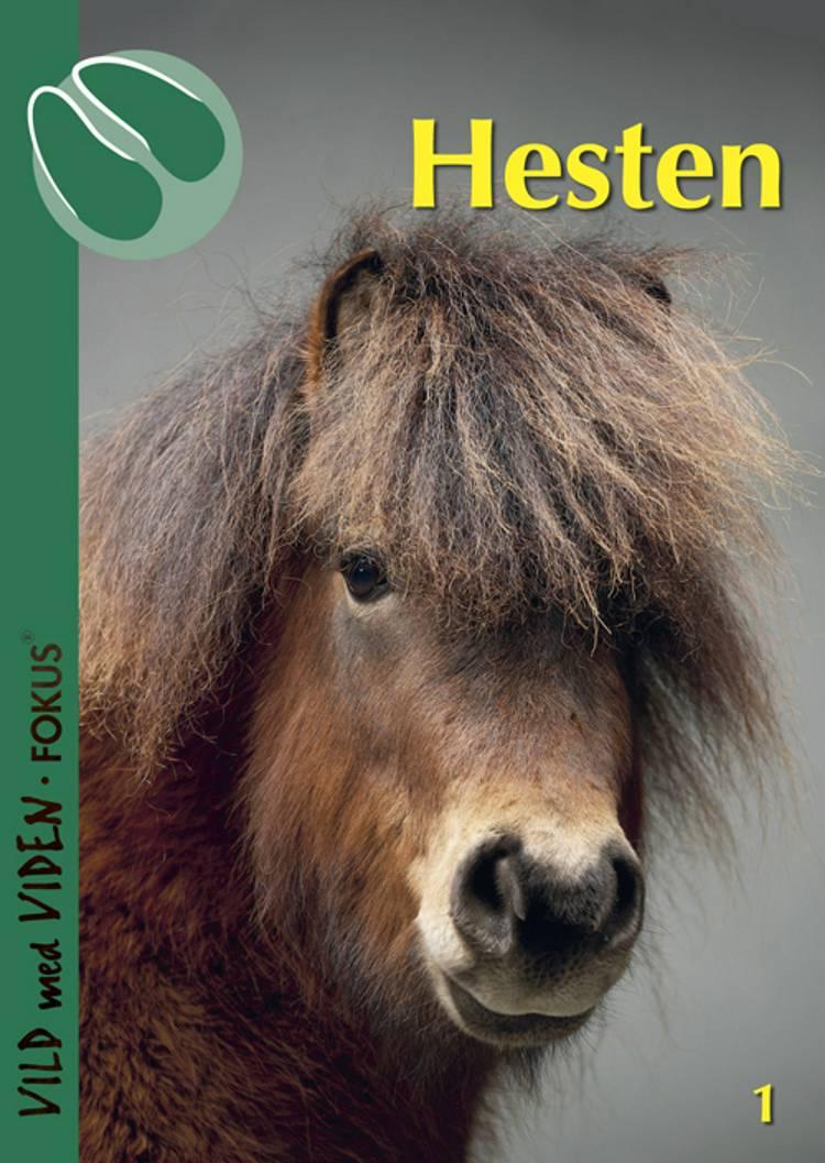 Hesten af Pernille Sandø