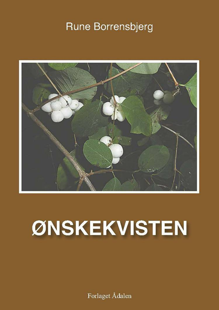 Ønskekvisten af Rune Borrensbjerg