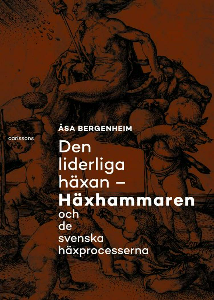 Den liderliga häxan : Häxhammaren och de svenska häxprocesserna af Åsa Bergenheim