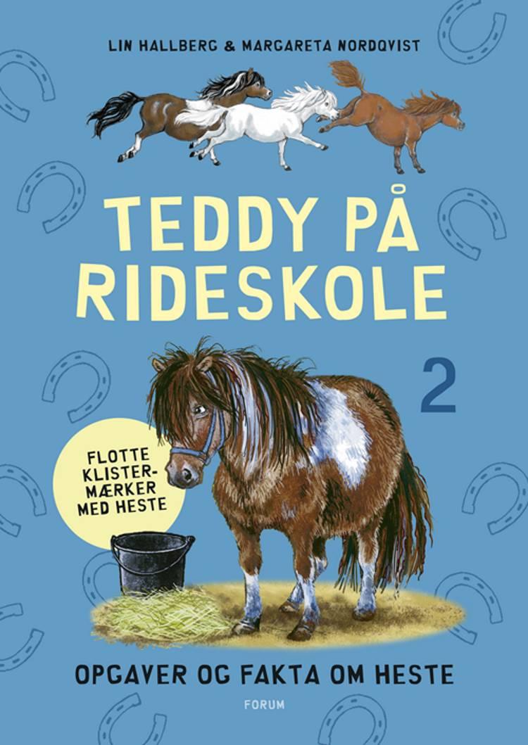 Teddy på rideskole af Lin Hallberg