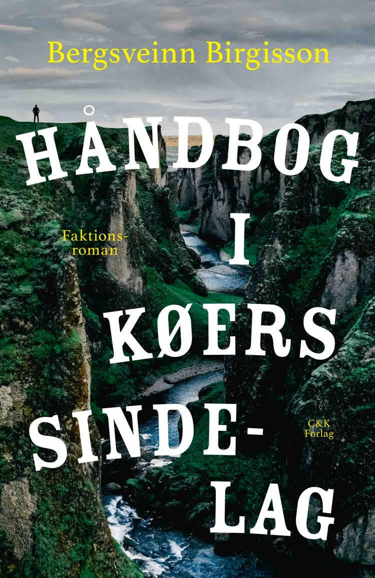 Håndbog i køers sindelag af Bergsveinn Birgisson