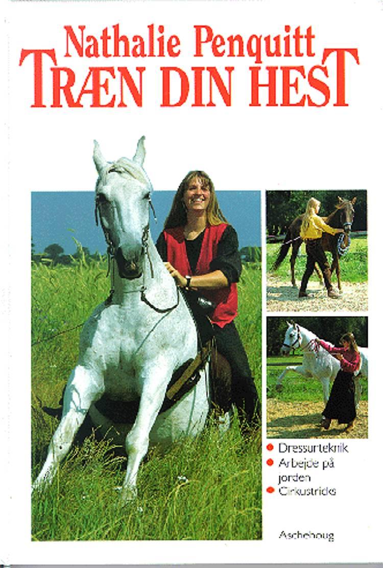 Træn din hest af Nathalie Penquitt
