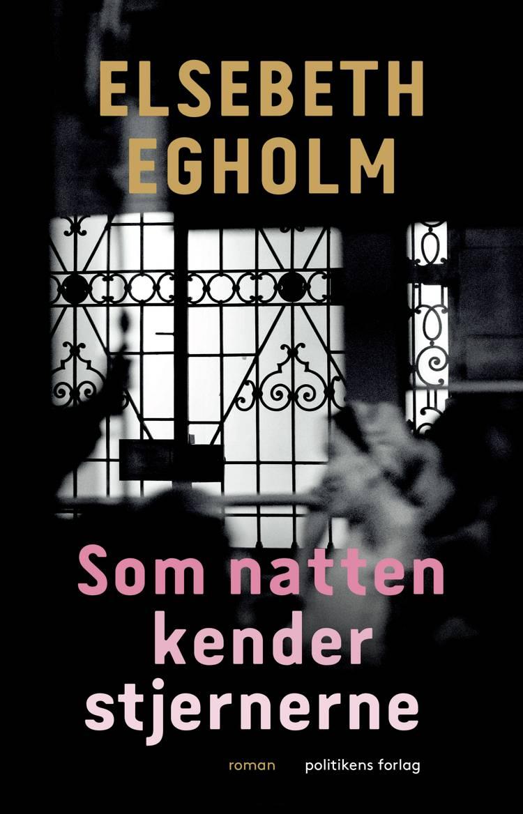 Som natten kender stjernerne af Elsebeth Egholm