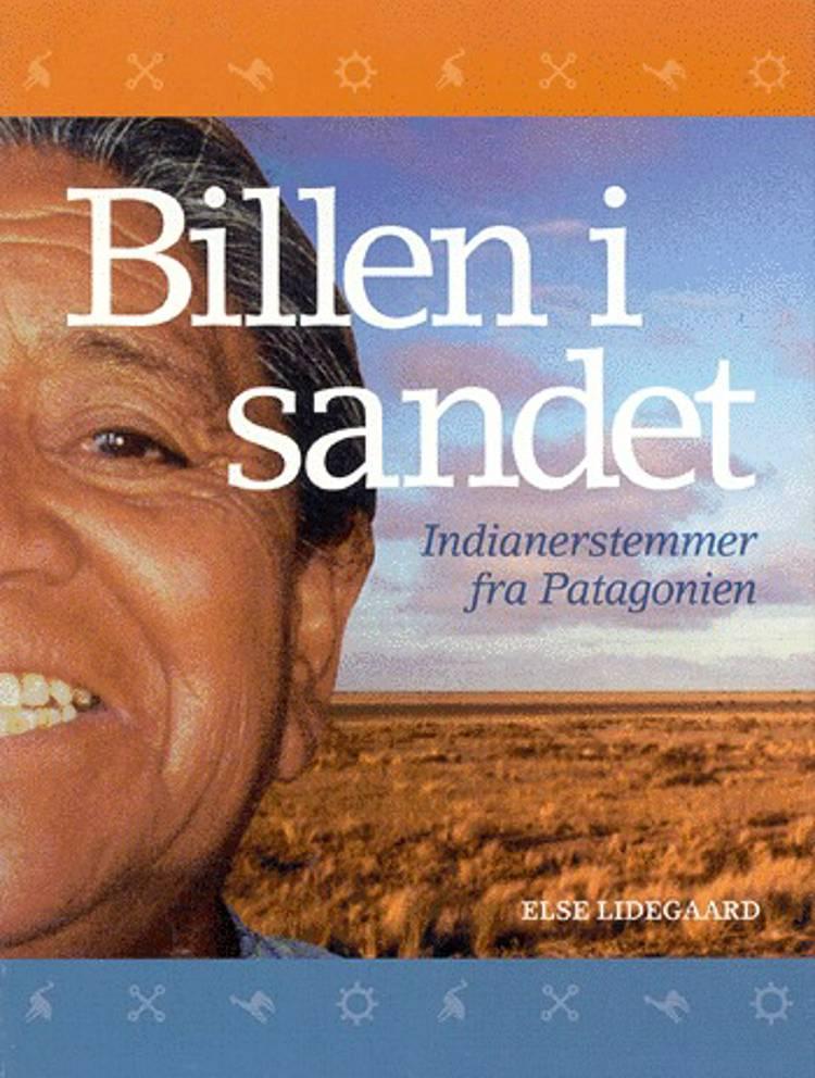 Billen i sandet af Else Lidegaard