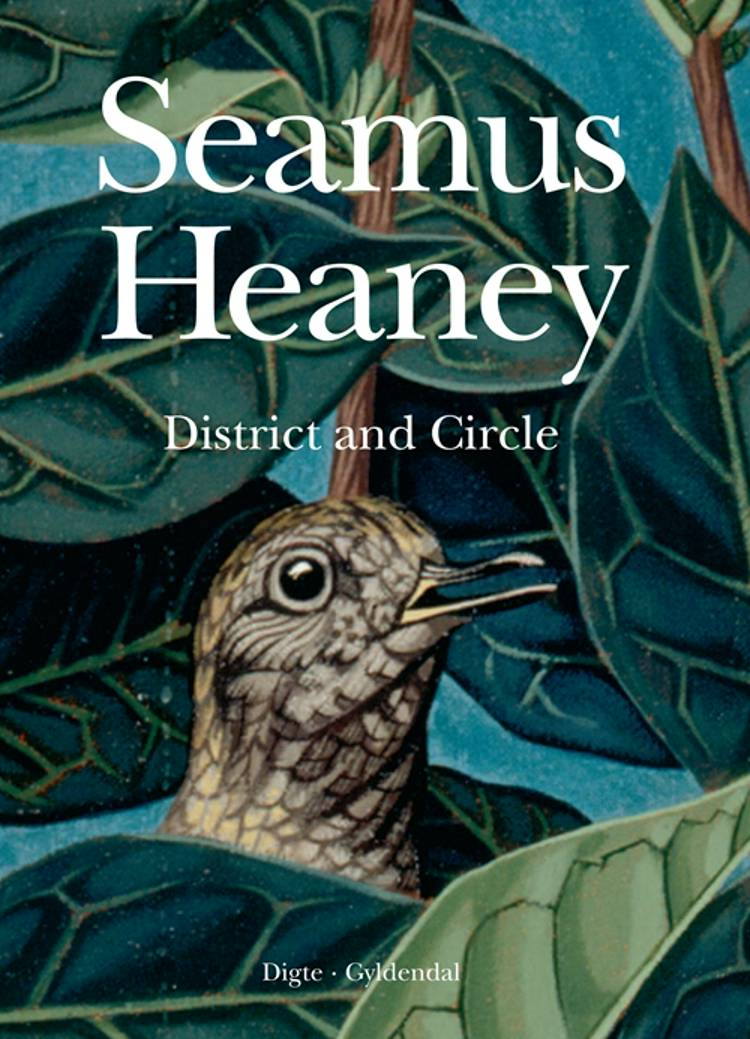 District and Circle af Seamus Heaney