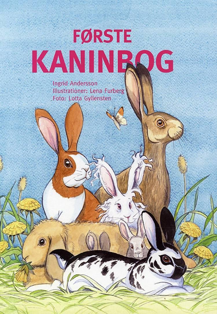 Første kaninbog af Ingrid Andersson