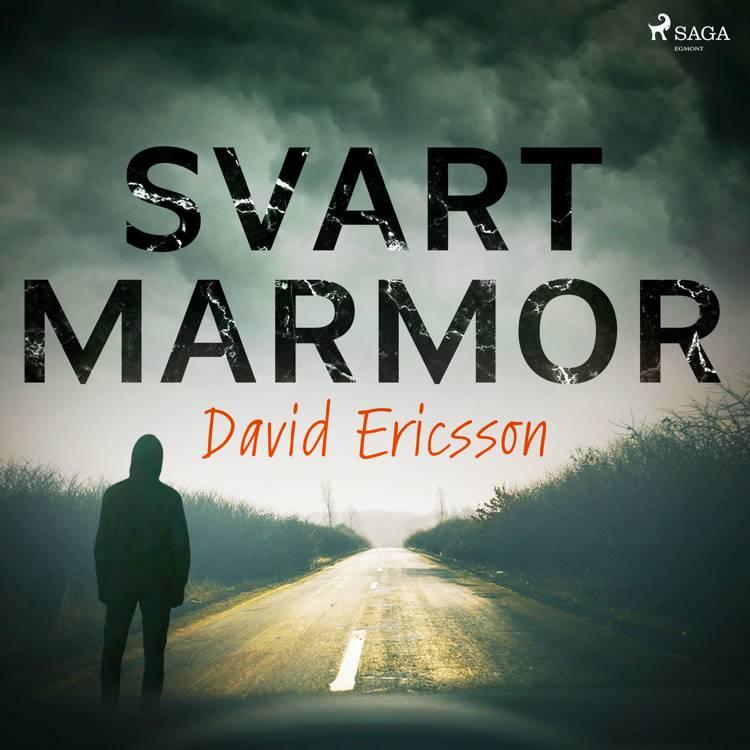 Svart Marmor af David Ericsson