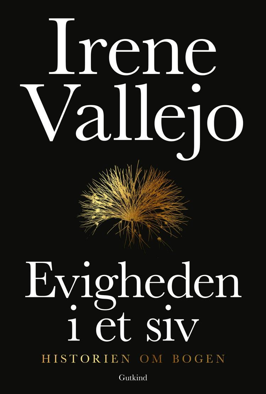 Evigheden i et siv af Irene Vallejo
