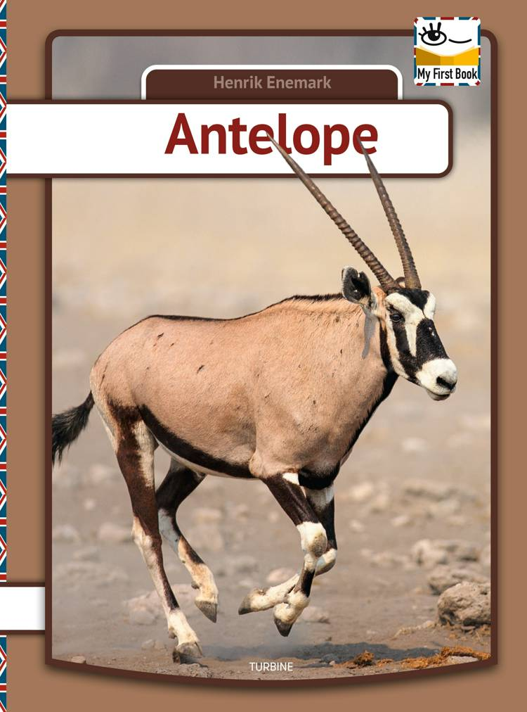 Antelope af Henrik Enemark