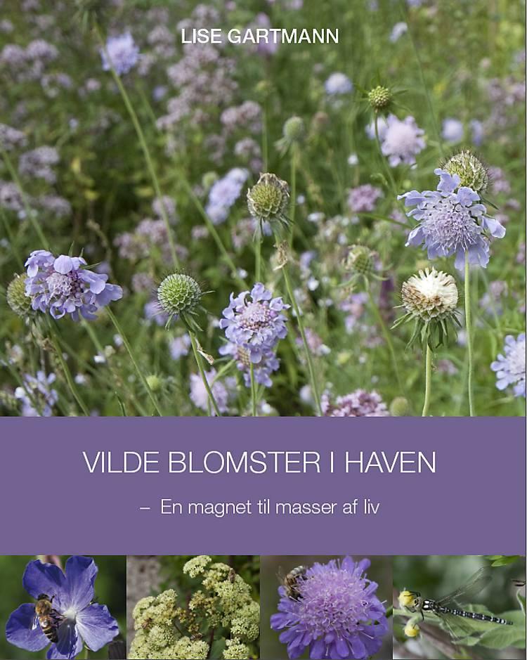 Vilde blomster i haven af Lise Gartmann