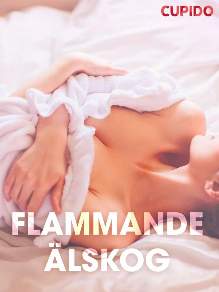 Flammande älskog - erotiska noveller af Cupido