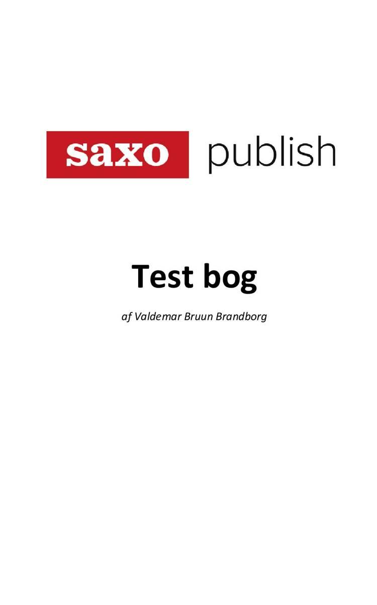 TEST BOG: Saxo Publish af Valdemar Bruun Brandborg