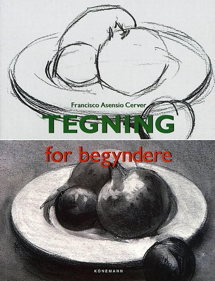 Tegning for begyndere
