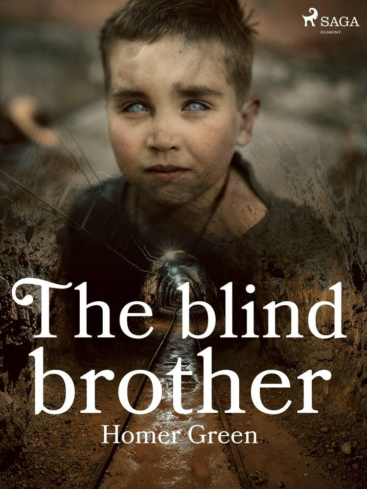 The Blind Brother af Homer Green