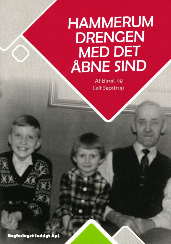 Hammerum Drengen Med Det Åbne Sind af Leif Sepstrup og Birgit Sepstrup