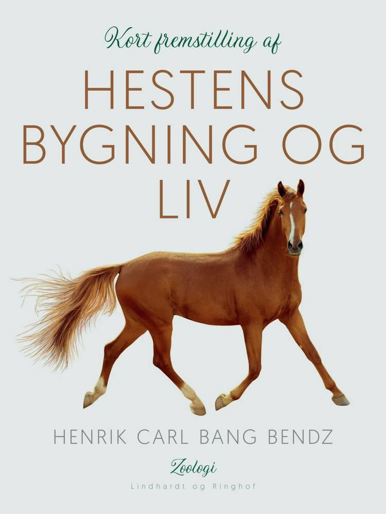 Kort fremstilling af hestens bygning og liv af Henrik Carl Bang Bendz