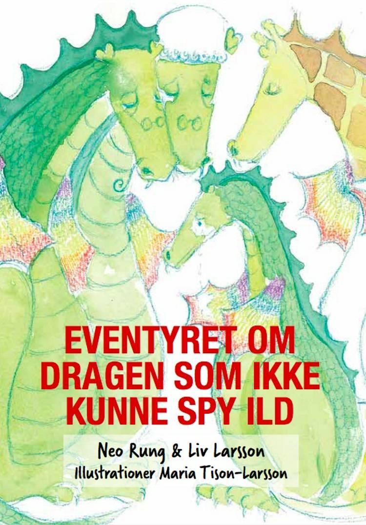Eventyret om dragen som ikke kunne spy ild af Liv Larsson og Neo Rung