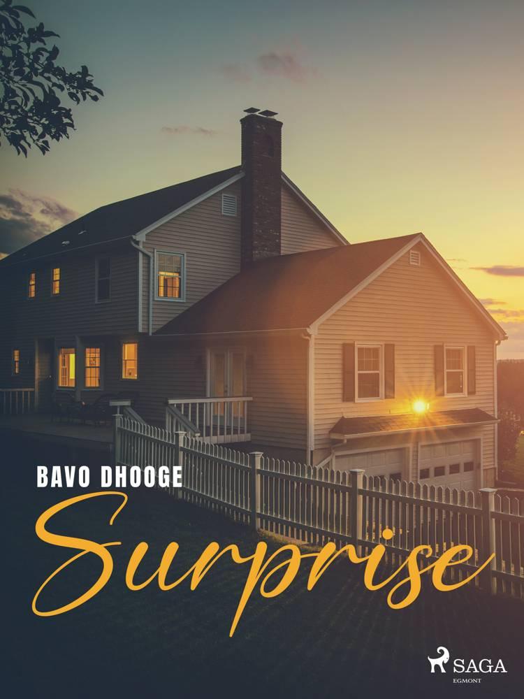 Surprise af Bavo Dhooge