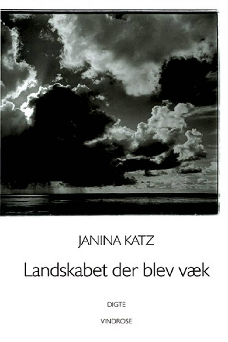 Landskabet der blev væk af Janina Katz