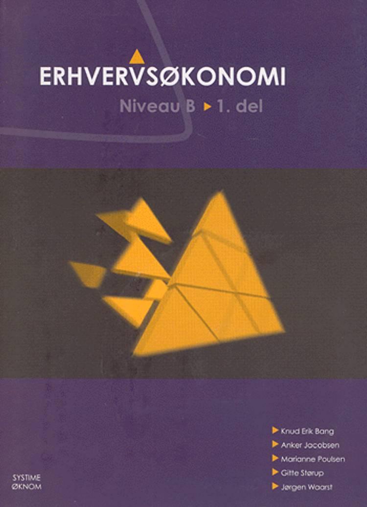 Erhvervsøkonomi - niveau B af Knud Erik Bang, Kai Hansen, Anker Jacobsen og Gitte Størup m.fl.