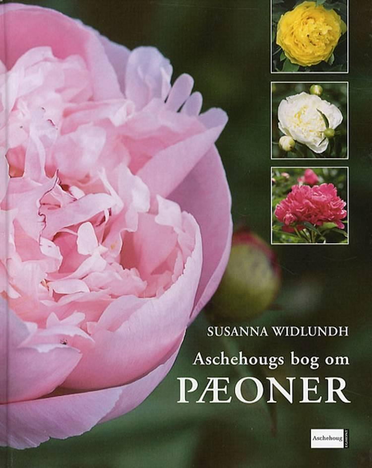 Aschehougs bog om Pæoner af Susanna Widlundh