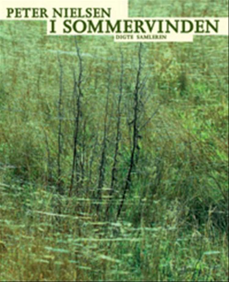 I sommervinden af Peter Nielsen