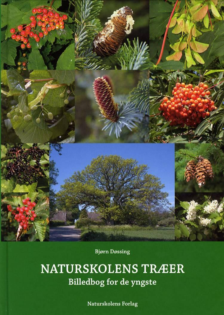 Naturskolens træer af Bjørn Døssing