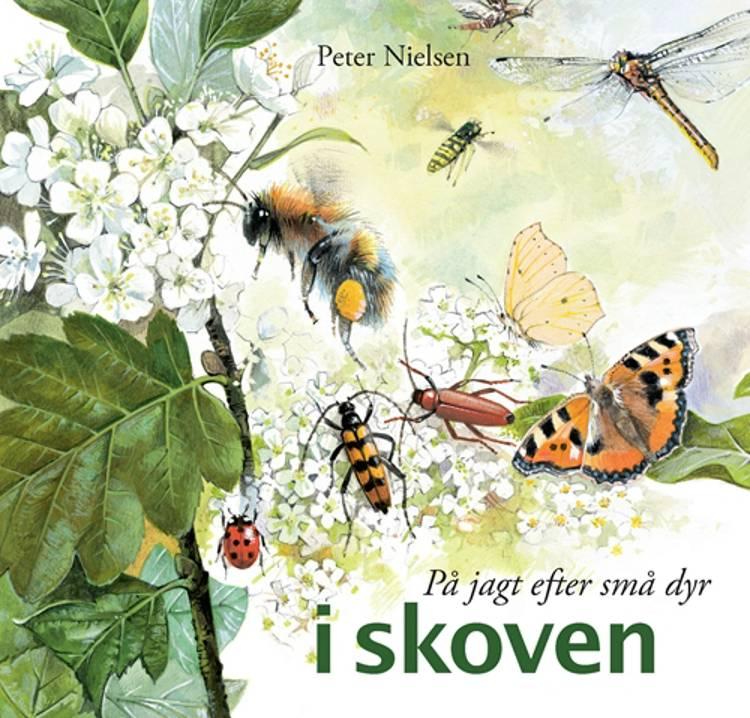 På jagt efter små dyr i skoven af Peter Nielsen, Bente Vita Pedersen og Susanne Weitemeier m.fl.