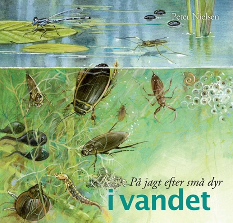 På jagt efter små dyr i vandet af Peter Nielsen, Bente Vita Pedersen, Susanne Weitemeier og Jakob Sunesen m.fl.