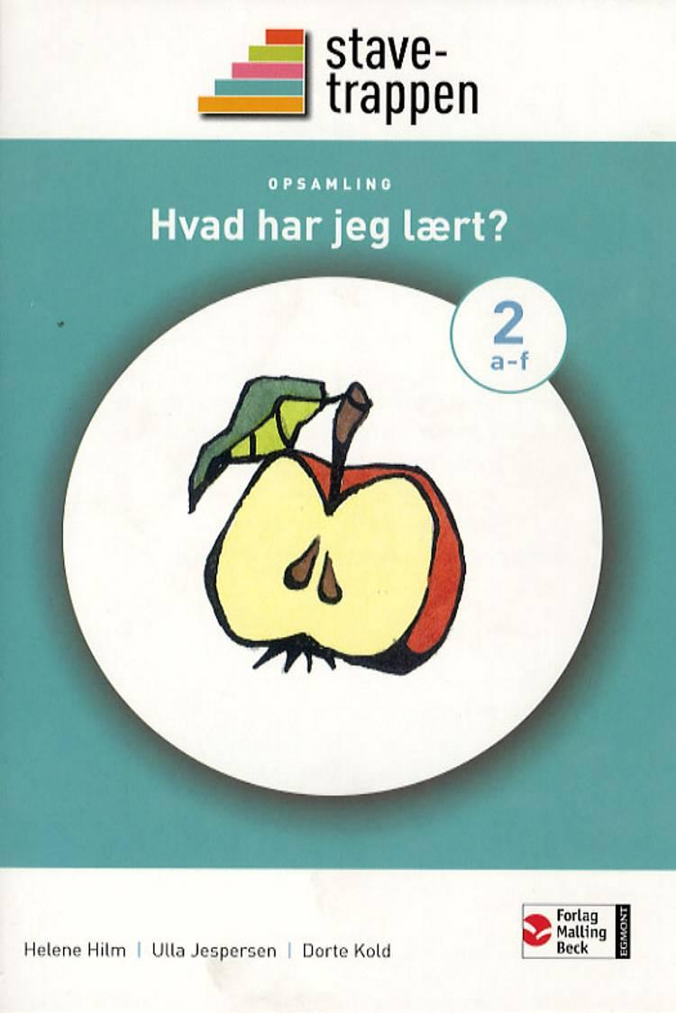 Stavetrappen 2 Hvad har jeg lært? - opsamling af Dorte Kold, Helene Hilm og Ulla Jespersen